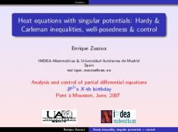 Heat equations with singular potentials: Hardy & Carleman ...