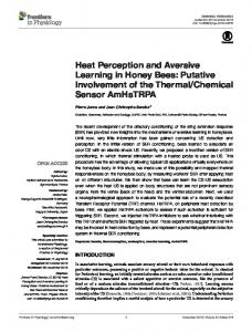 Heat Perception and Aversive Learning in Honey Bees - Frontiers