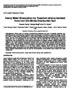 Heavy Metal Biosorption by Fusarium strains Isolated from Iron Ore