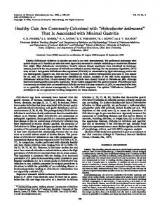 Helicobacter heilmannii - Journal of Clinical Microbiology - American ...