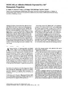 HEMCAM, an Adhesion Molecule Expressed by c-kit ... - BioMedSearch