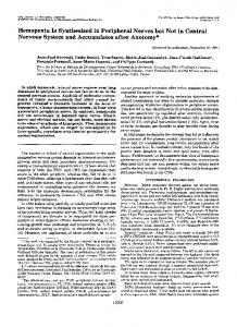 Hemopexin Is Synthesized in Peripheral Nerves but Not in Central ...