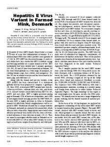 Hepatitis E Virus Variant in Farmed Mink, Denmark - CDC stacks