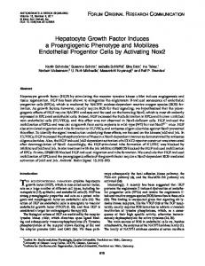 Hepatocyte Growth Factor Induces a