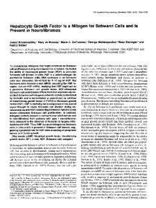 Hepatocyte Growth Factor Is a Mitogen for ... - Semantic Scholar