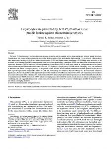 Hepatocytes are protected by herb Phyllanthus ... - Pathophysiology