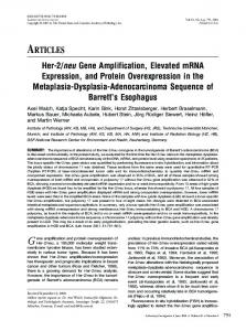 Her-2/neu Gene Amplification, Elevated mRNA Expression, and ...