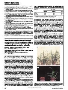 Herbicide resistance caused byspontaneousmutationofthe ...