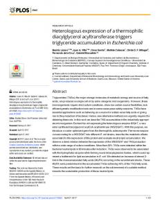 Heterologous expression of a thermophilic diacylglycerol ... - PLOS