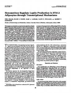 Hexosamines Regulate Leptin Production in 3T3-L1 Adipocytes ...