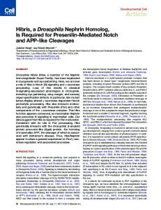 Hibris, a Drosophila Nephrin Homolog, Is Required for ... - Cell Press