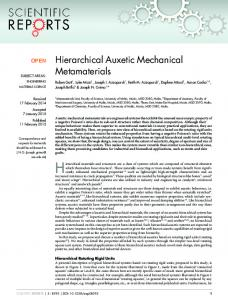 Hierarchical Auxetic Mechanical Metamaterials