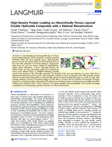 High-Density Protein Loading on Hierarchically ... - ACS Publications