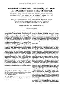 High enzyme activity UGT1A1 or low activity UGT1A8 and UGT2B4 ...