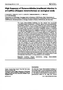 High frequency of Paracoccidioides brasiliensis infection in armadillos ...