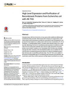 High Level Expression and Purification of