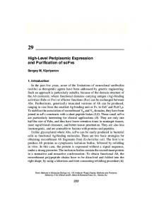 High-Level Periplasmic Expression and Purification of
