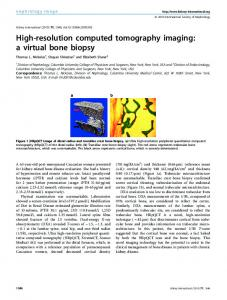 High-resolution computed tomography imaging ... - Kidney International