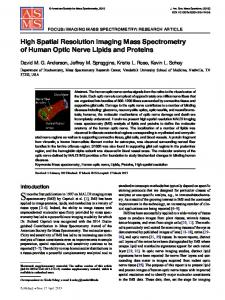 High Spatial Resolution Imaging Mass Spectrometry ...