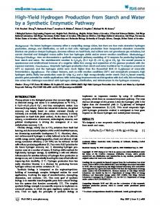 High-Yield Hydrogen Production from Starch and