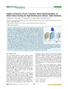 Highly Conductive Porous Transition Metal ... - ACS Publications