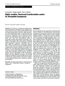 Highly sensitive, fluorescent transformation marker ... - Springer Link