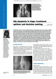 Hip dysplasia in dogs: treatment options and decision ...
