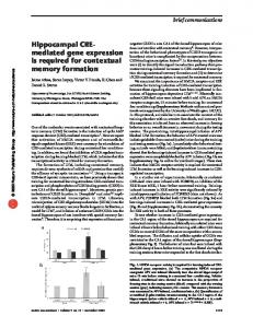 Hippocampal CRE- mediated gene expression is required for ... - Nature