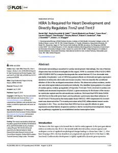 HIRA Is Required for Heart Development and