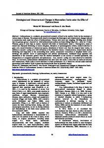 Histological and Ultrastructural Changes in ... - Semantic Scholar