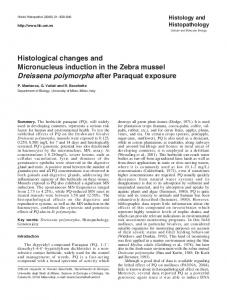 Histological changes and Micronucleus induction in the Zebra ... - UniMI
