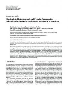 Histological, Histochemical, and Protein Changes after Induced