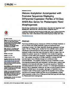 Histone Acetylation Accompanied with Promoter ... - Semantic Scholar