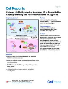 Histone H3 Methylated at Arginine 17 Is Essential for ... - Cell Press