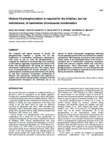 Histone H3 phosphorylation is required for the ... - Semantic Scholar