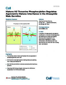 Histone H3 Threonine Phosphorylation Regulates ... - Cell Press