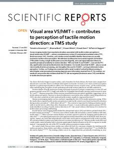 hMT+ contributes to perception of