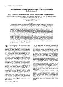 Homologous recombination involving a large heterology in ...