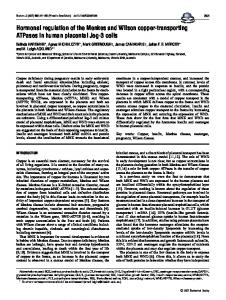 Hormonal regulation of the Menkes and Wilson copper-transporting ...