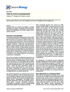 How to build a paraspeckle - BioMedSearch