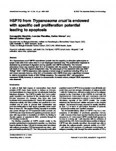 HSP70 from Trypanosoma cruzi is endowed with specific cell ...