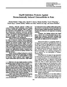 Hsp90 Inhibition Protects Against ... - Wiley Online Library