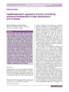 Hsp90dependent regulatory circuitry controlling ... - Wiley Online Library