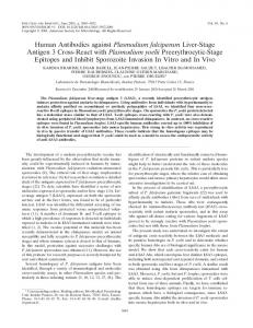 Human Antibodies against Plasmodium falciparum Liver-Stage ...