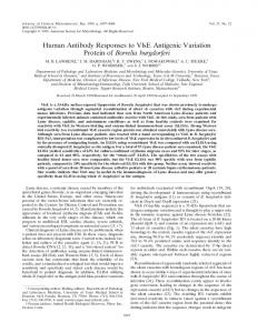 Human Antibody Responses to VlsE Antigenic Variation Protein of ...