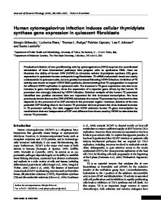 Human cytomegalovirus infection induces cellular ... - CiteSeerX