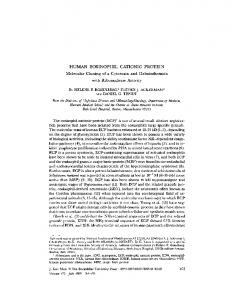 HUMAN EOSINOPHIL CATIONIC PROTEIN ... - BioMedSearch