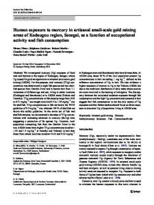 Human exposure to mercury in artisanal small-scale gold mining ...