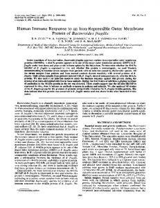 Human Immune Response to an Iron-Repressible Outer Membrane ...