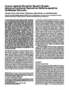 Human Isolated Bronchial Smooth Muscle ... - Semantic Scholar